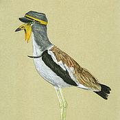 """Картины ручной работы. Ярмарка Мастеров - ручная работа Рисунок пастелью """"Белоголовая пигалица"""", птицы в шляпах. Handmade."""