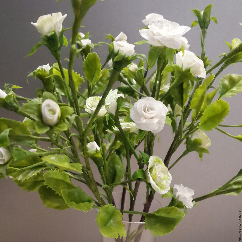 Белые цветы кустовые