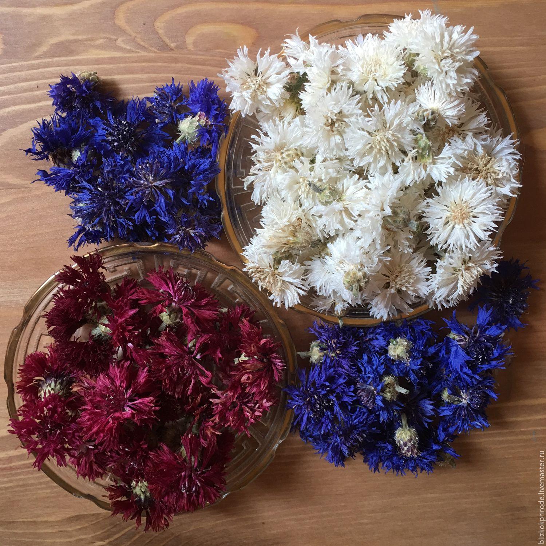Сухоцветы купить в москве искусственные цветы купить спб приморский район