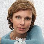 Ольга Павлычева - Ярмарка Мастеров - ручная работа, handmade