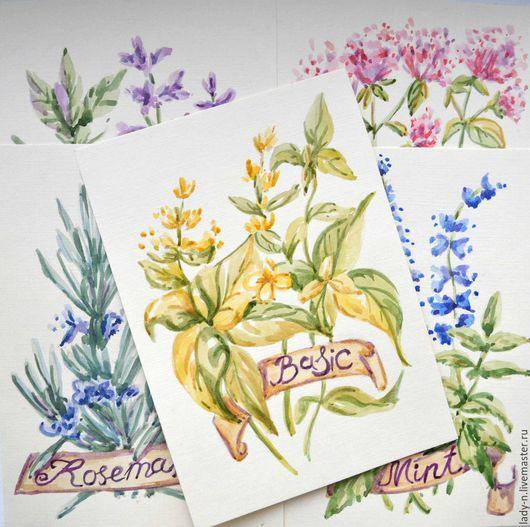 `Прованские травы`, акварель, набор рисунков