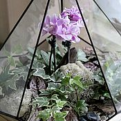 Цветы и флористика handmade. Livemaster - original item The Floriana. The Floriana Orchid. Orchidarium. Handmade.