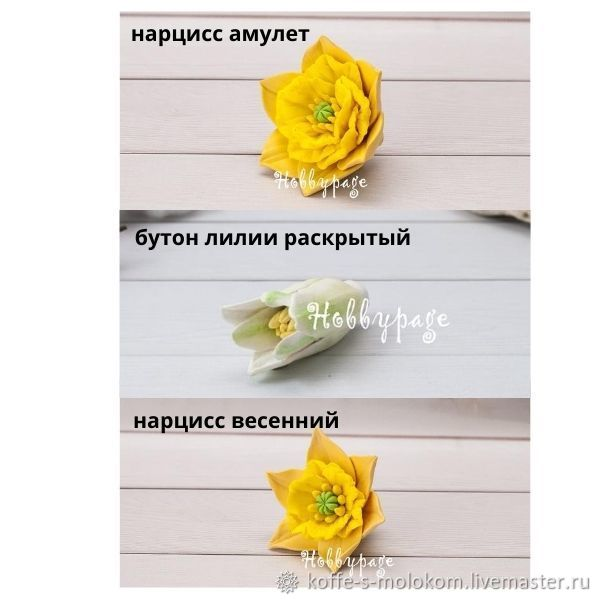 Silicone form of daffodils Amulet, Spring, Lily Bud opened, Form, Moscow,  Фото №1