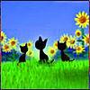 Yuliajulia (Blackcats) - Ярмарка Мастеров - ручная работа, handmade