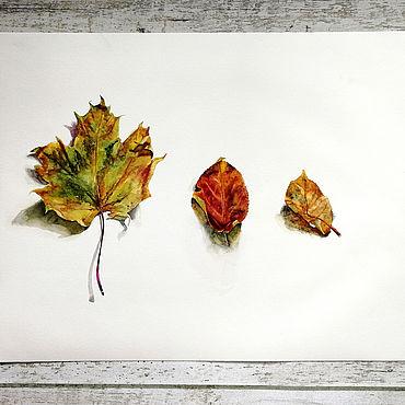 """Картины и панно ручной работы. Ярмарка Мастеров - ручная работа Акварельная картина """"Осенние листья"""". Handmade."""