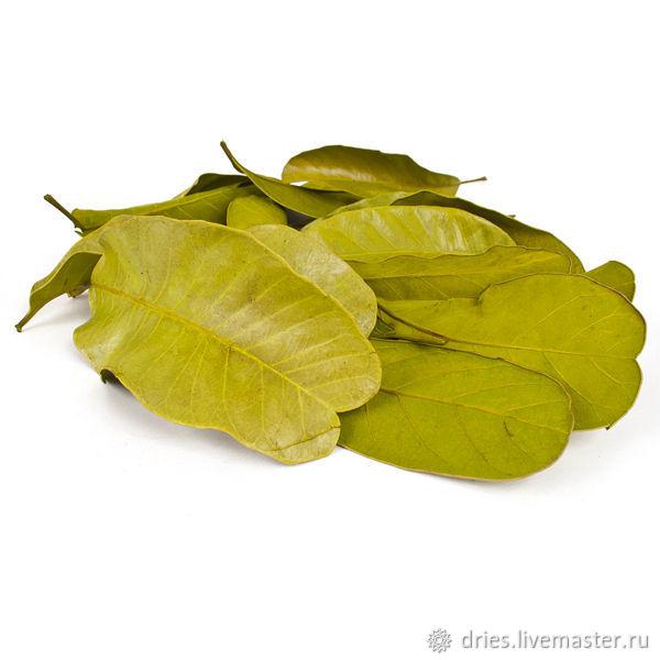 Материалы:  листья мандиока большие зелёный, , Москва, Фото №1