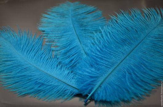 Другие виды рукоделия ручной работы. Ярмарка Мастеров - ручная работа. Купить Перо страуса, аквамарин. Handmade. Перья