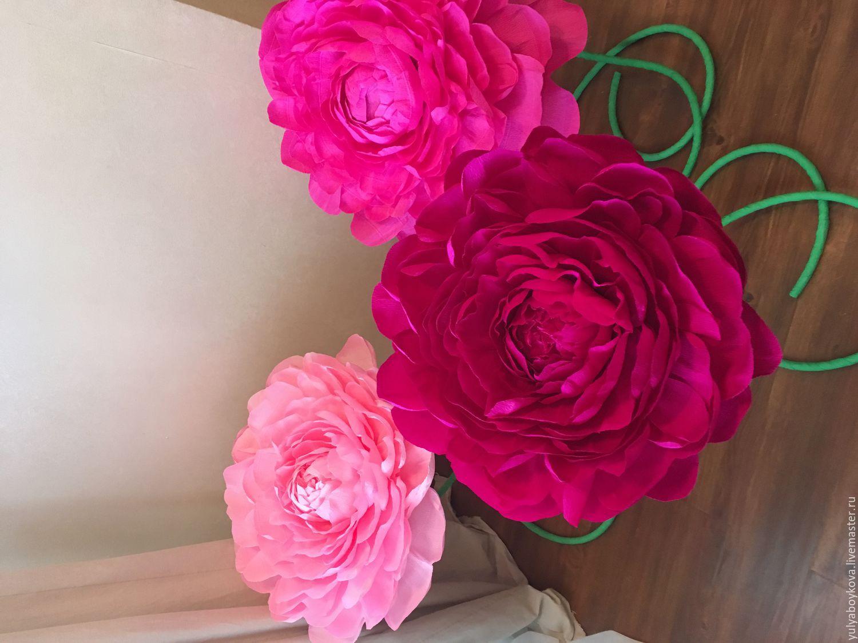 Пионы большие цветы из гофрированной бумаги