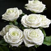 Цветы и флористика ручной работы. Ярмарка Мастеров - ручная работа Белые розы. Handmade.