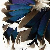 Перья ручной работы. Ярмарка Мастеров - ручная работа Перо утки натуральное, неокрашенное №14.. Handmade.