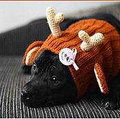 """Аксессуары ручной работы. Ярмарка Мастеров - ручная работа Шапка для собаки """"Оленьи рожки"""". Handmade."""