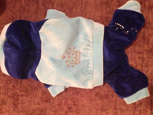 """Одежда для собак, ручной работы. Ярмарка Мастеров - ручная работа. Купить Костюм спортивный """"GLAMUR SPORT"""". Handmade. Синий"""