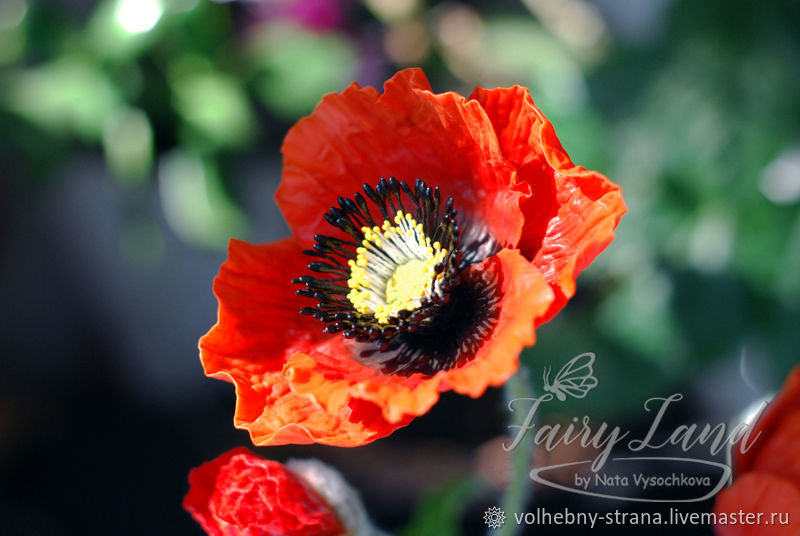 """Interior composition """"Poppies"""" made of polymer clay, Composition, Rostov-on-Don,  Фото №1"""