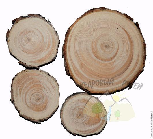 Кедровый спил шлифованный. Диаметры : 2,5 – 4 см; 4,5 – 5,5 см; 6 – 7 см; 8 – 9 см; 9,5 – 10,5 см.  Толщина спилов около 0,9-1,2 см. Ярмарка Мастеров - ручная работа.  Дар сибирской тайги.