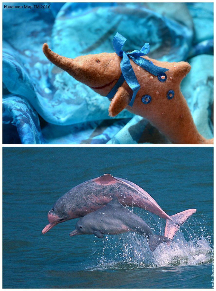 Дельфин спокойствие в подарок