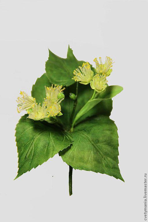 """Броши ручной работы. Ярмарка Мастеров - ручная работа. Купить """"ЛИПОВЫЙ ЦВЕТ"""". Handmade. Зеленый, июнь, лист, липа, дерево"""
