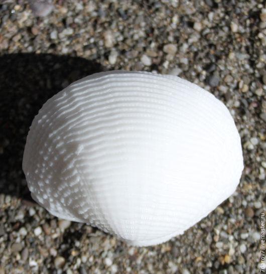 Мыло Ракушка Большая 3D Этот продукт по форме и запаху напоминает о море или океане.