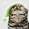 Masha (cat-and-stars) - Ярмарка Мастеров - ручная работа, handmade