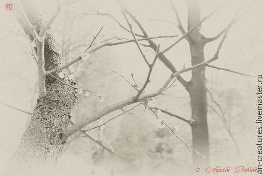 Стильное оформление Вашего интерьера и дорогих Сердцу предметов\ Снимок из серии `Инстаграм` © Angelika Nabokova