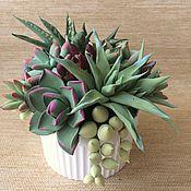 Composition handmade. Livemaster - original item Succulent garden