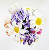 BloomBoom (bloomboom) - Ярмарка Мастеров - ручная работа, handmade