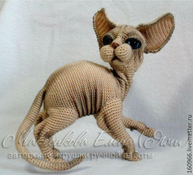 картинки сфинксов-кошек