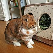 """Для домашних животных, ручной работы. Ярмарка Мастеров - ручная работа Кормушка для кроликов """"Зайки"""". Handmade."""
