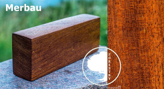 Структура и рисунок дерева может отличаться от изображения на фото.