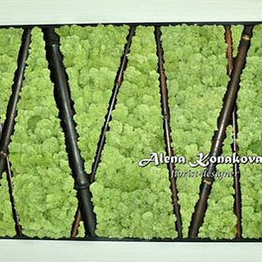 Дизайн и реклама ручной работы. Ярмарка Мастеров - ручная работа Настенное панно из стабилизированного мха с бамбуком. Handmade.