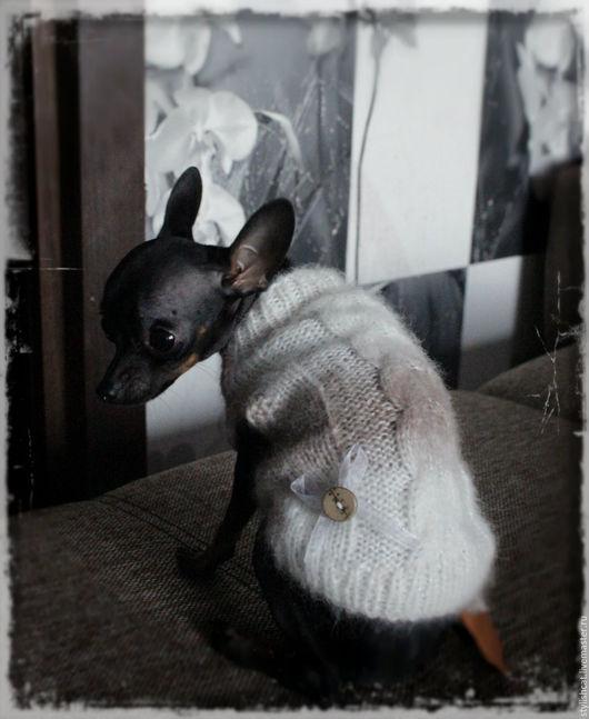 Одежда для собак, ручной работы. Ярмарка Мастеров - ручная работа. Купить Свитер для собак. Handmade. Серебряный, свитер для собаки