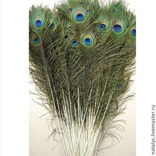 Другие виды рукоделия ручной работы. Ярмарка Мастеров - ручная работа. Купить Перо павлина 25-30 см. Handmade.