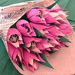 Алина Канская (sweets-flowers) - Ярмарка Мастеров - ручная работа, handmade