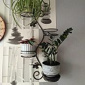 Цветы и флористика handmade. Livemaster - original item A support wall for orchids 4 plate. Handmade.