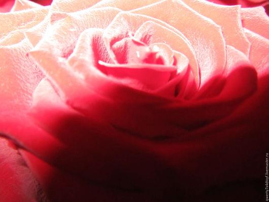 Фотокартины ручной работы. Ярмарка Мастеров - ручная работа. Купить Роза. Handmade. Ярко-красный, цветок