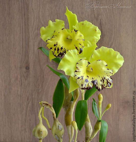 Цветы ручной работы. Ярмарка Мастеров - ручная работа. Купить Орхидея Каттлея из полимерной глины. Handmade. Вербицкая наталия