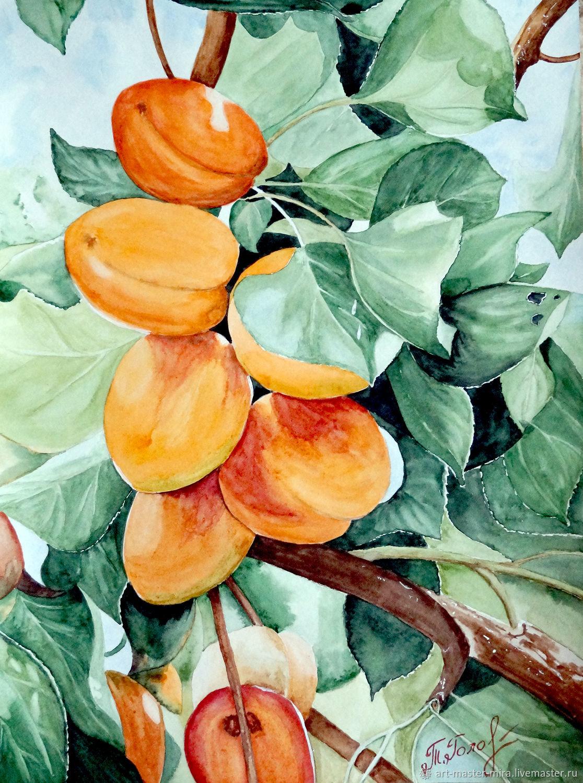 """Оранжевый, зелёный. """"Сладкие абрикосы"""", Картины, Севастополь, Фото №1"""