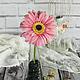 Гербера из полимерной глины нежно-розового цвета. Автор: Мащенко Анастасия