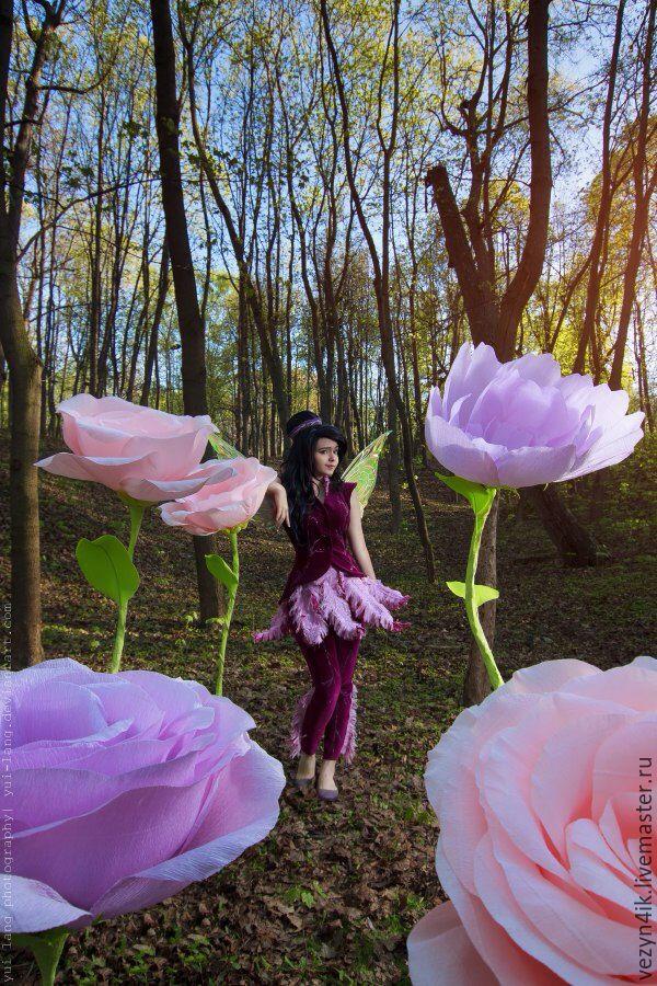 цветы фото большие