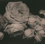 Катерина (kalinich) - Ярмарка Мастеров - ручная работа, handmade