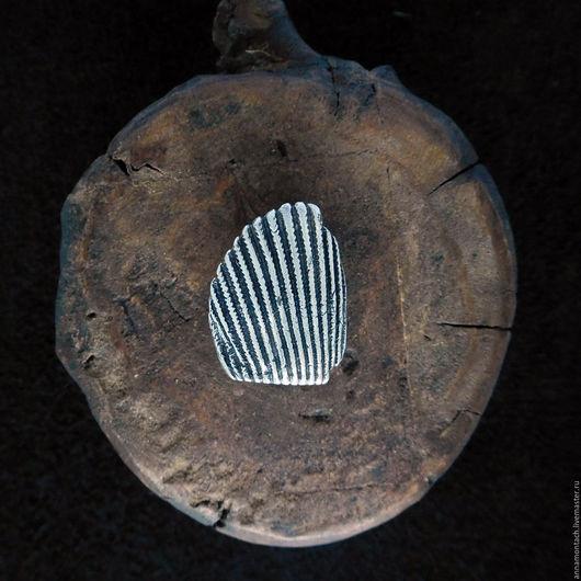 Морское кольцо, кольцо серебряное ракушка, раковина из серебра, серебряная ракушка, морская раковина кольцо