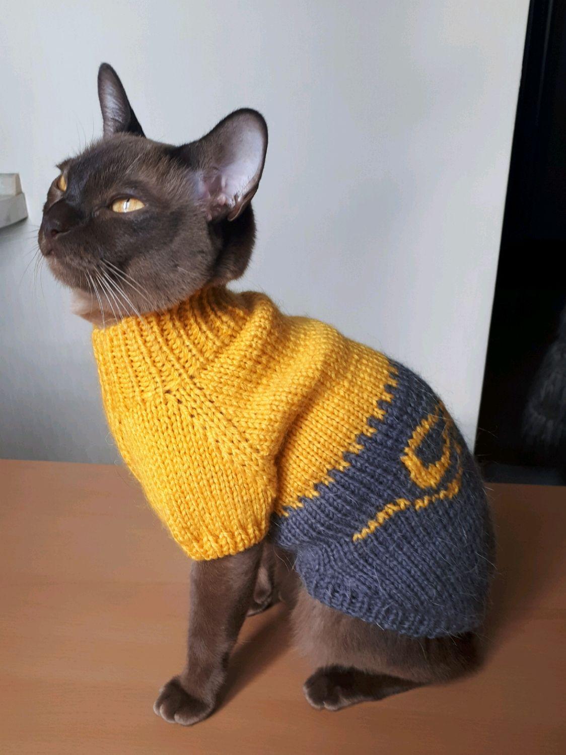 вязаная одежда для собак и кошек купить в интернет магазине на