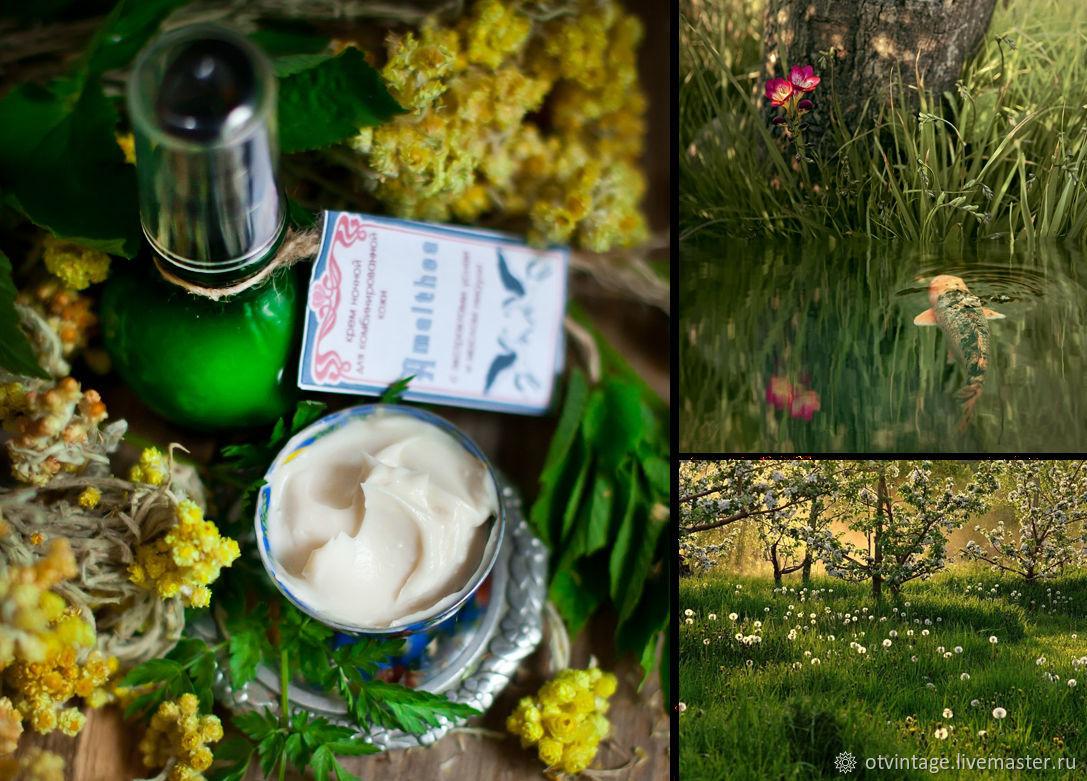 Night cream for combination skin 25 AMALTHEA, Creams, Peterhof,  Фото №1
