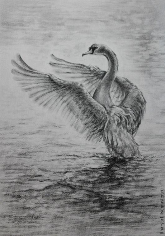 Рисунок графитными карандашами Лебединый танец