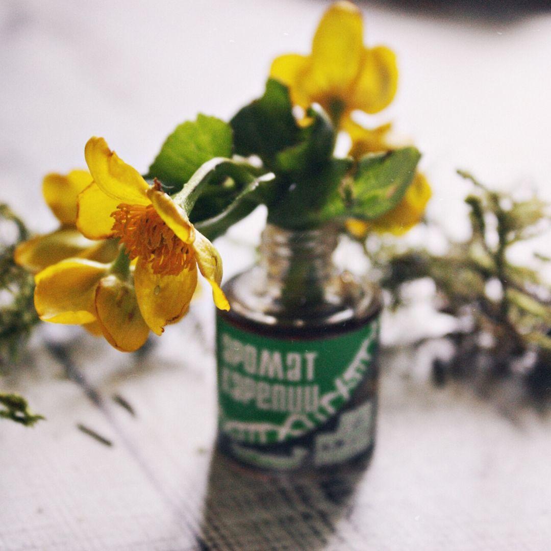 Аромат Карелии (зеленая упаковка), Духи, Петрозаводск,  Фото №1