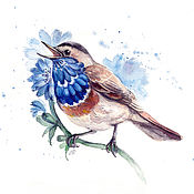 Картины и панно handmade. Livemaster - original item Bluethroat in the colors of the chicory, watercolor. Handmade.
