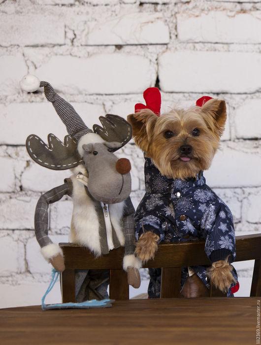 Одежда для собак, ручной работы. Ярмарка Мастеров - ручная работа. Купить Одежда для собак комбинезон Зимняя Сказка. Handmade.