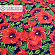 Red Poppies swim fabric. Fabric. SLAVYANKA. My Livemaster. Фото №6