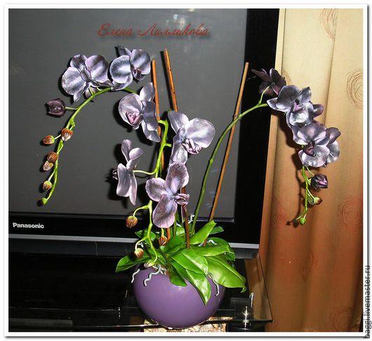Цветы ручной работы. Ярмарка Мастеров - ручная работа. Купить Черная Орхидея Фаленопсис. Handmade. Холодный фарфор, интерьерная композиция