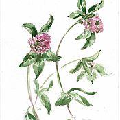 """Картины и панно ручной работы. Ярмарка Мастеров - ручная работа Акварель """"Клевер. Кашка"""" картина, акварельные цветы, недорого. Handmade."""