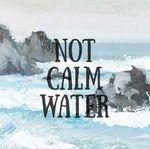 Взволнованная вода (notcalmwater) - Ярмарка Мастеров - ручная работа, handmade